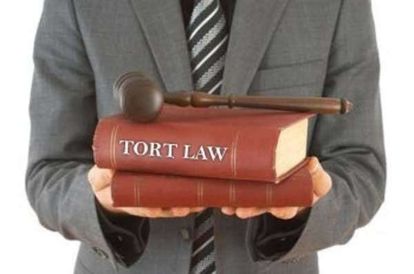 A Helpful Introduction to Torts